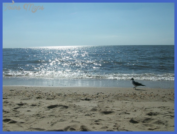 new jersey travel destinations 2 New Jersey Travel Destinations