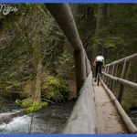 Oregon travel in autumn: A bewitching window between summer and winter ...