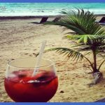 drinking-in-puerto-rico | Cocktails | Pinterest