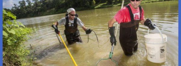 Fishing for fun: Jesse Jones hosts Fish of Spring Creek class - Your ...