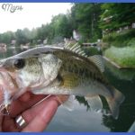 fishing largemouth bass 5 150x150 Fishing: Largemouth Bass