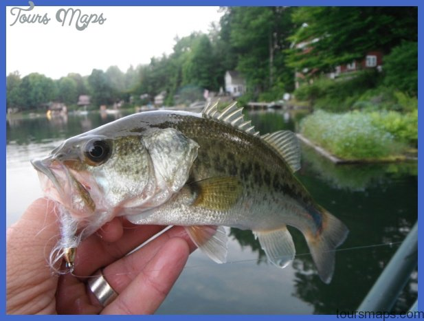 fishing largemouth bass 5 Fishing: Largemouth Bass