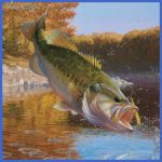 fishing largemouth bass 6 150x150 Fishing: Largemouth Bass