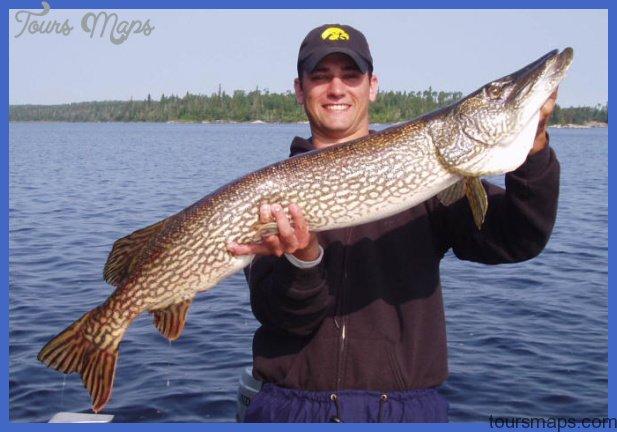 Fishing northern pike for Northern pike fishing
