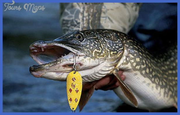 fishing northern pike 14 Fishing: Northern Pike