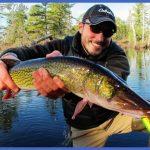Pickerel Fish What: pickerel fishing with