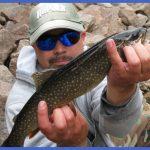 fishing splake 14 150x150 Fishing: Splake