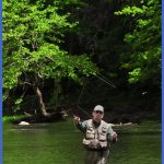 2013 Fall Trout Stockings Begin Oct. 15