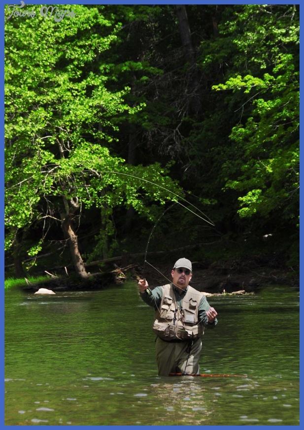 fly fishing hot line 1 Fly Fishing Hot Line
