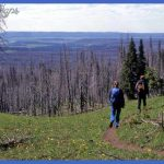 Hikers walk along a trail in Yellowstone National Park. (Jim Peaco ...
