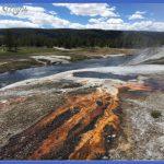 the grubb six: Yellowstone - old faithful area