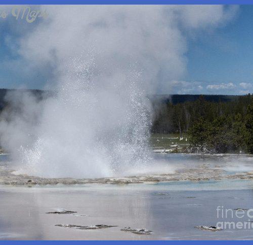 Great Fountain Geyser by Carolyn Fox