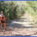 Somewhere Far Afield » A Lesson Learned in Guanica Dry Forest