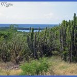guanica dry forest 7 150x150 Guanica Dry Forest