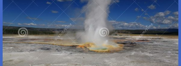 The Scenery Of Lower Geyser Basin In Yellowstone Stock Images - Image ...