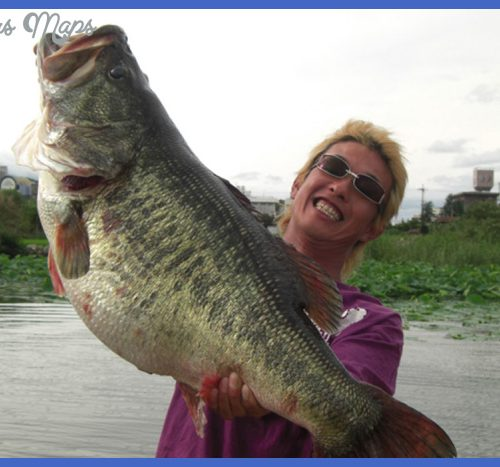 ... fish is the newest world record holder coming in at 22lbs 5oz, 29