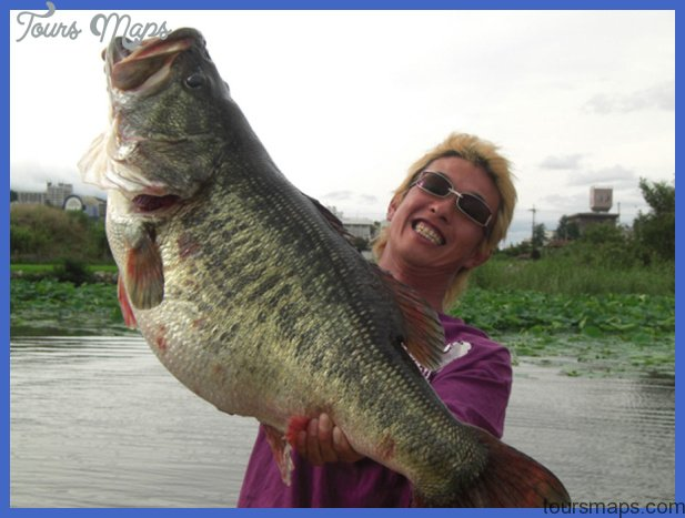 maines record game fish fresh water 6 Maines Record Game Fish Fresh water