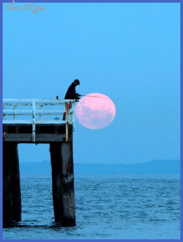 the Moon: Can Solunar Tables and Moon Phases help you Catch more Fish ...