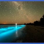 Bioluminescent Bay at Vieques Island