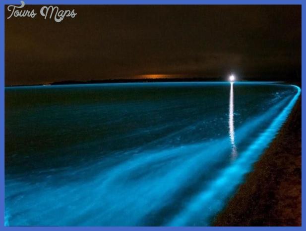 Bioluminescent Bay) หรือ อ่าวยุง (Mosquito bay ...