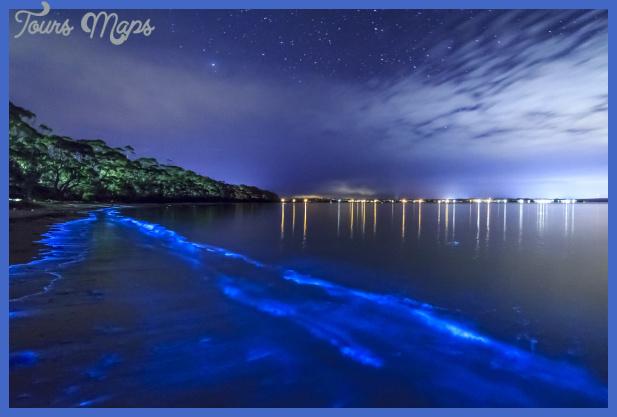 Bioluminescent Bay (a.k.a. Mosquito Bay) – Isla de Vieques ...