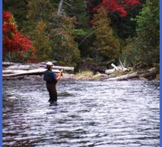 About the River - Friends of the Presumpscot River
