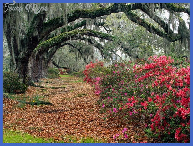 Charleston South Carolina Tourist Attractions | Charleston SC ...