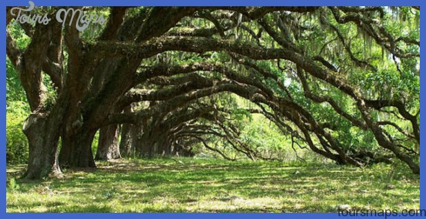 South Carolina – Travel Guide | Tourist Destinations