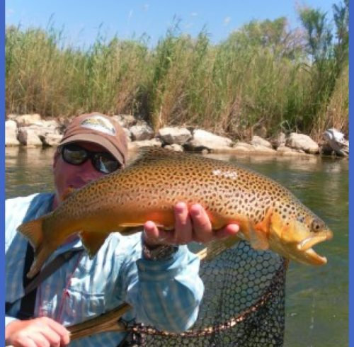 ... Blog Archive Utah Fly Fishing Report: Spring Time flows and Hatch's