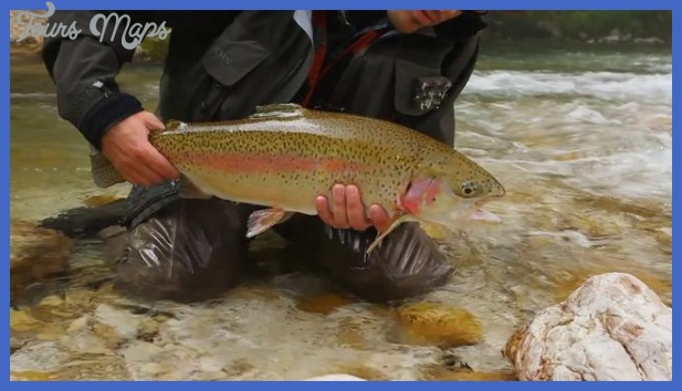 "Hatch"" trailer - by Gin Clear Media 