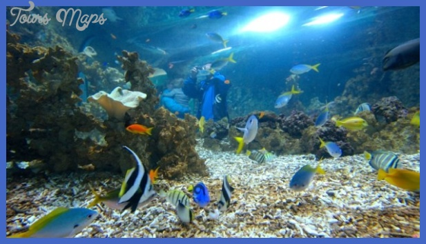 Norway Bergen Attractions – Bergen Aquarium
