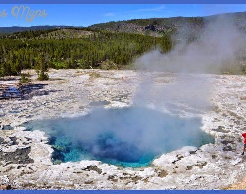 la plus belle étant sans conteste celle de l'Artemisia geyser.