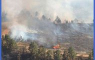 New blaze pops up near well-contained Bales Creek fire