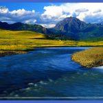 yellowstone larger mammals  9 150x150 Yellowstone Larger mammals