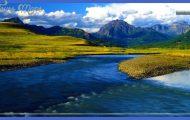 is for Yellowstone National Park #atozchallenge @aprila2z   IF I ...