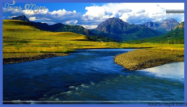 is for Yellowstone National Park #atozchallenge @aprila2z | IF I ...