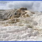yellowstone mammoth hot springs area 5 150x150 Yellowstone Mammoth Hot Springs Area