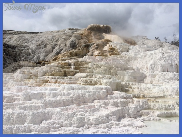 yellowstone mammoth hot springs area 5 Yellowstone Mammoth Hot Springs Area