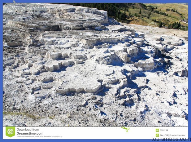 yellowstone mammoth hot springs area 7 Yellowstone Mammoth Hot Springs Area