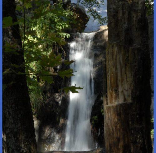 2011 Sequoia National Park | God's Majesty Revealed | Pinterest