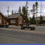 yellowstone north entrance 14 150x150 Yellowstone: NORTH ENTRANCE