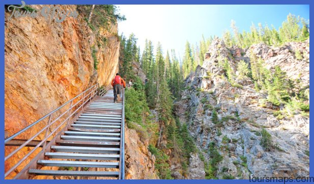 Hike Yellowstone National Park's Uncle Tom's Trail | Yellowstone ...