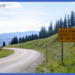 yellowstone west entrance 7 150x150 Yellowstone: WEST ENTRANCE