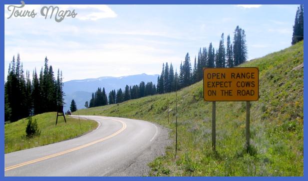 yellowstone west entrance 7 Yellowstone: WEST ENTRANCE