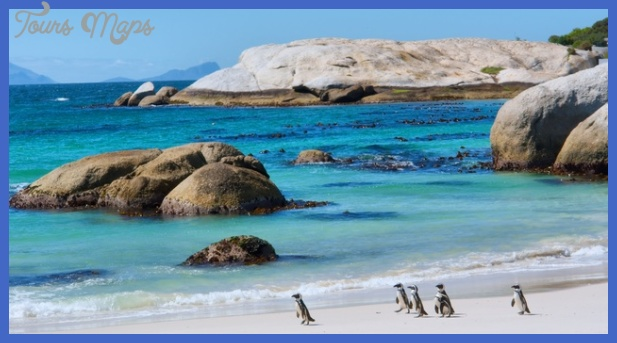 2014best placescape townsouth africapenguins 1292013 21634 panoramic Best african country to visit