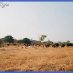 botswana 150x150 Best country to visit in November