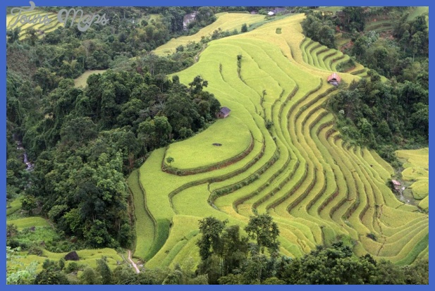 terraced rice paddy fields are seen rdur width840 Best countries to visit in september