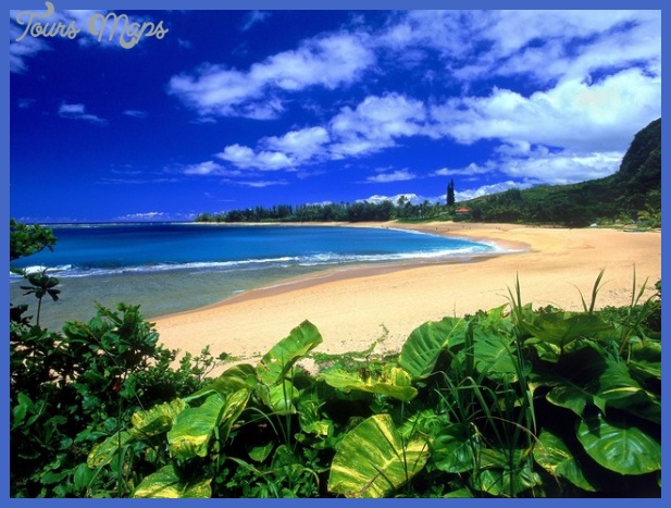writers groups in hawaii 1 Best places to visit Hawaii