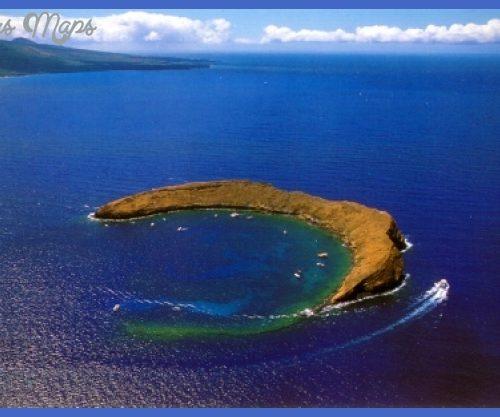 Aloha-Hawaii1.jpg