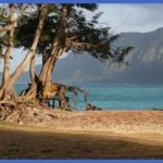 bellows beach a military recreation facility on oahu courtesy cadet x on flickr cc 300x199 150x150 Hawaii places to stay